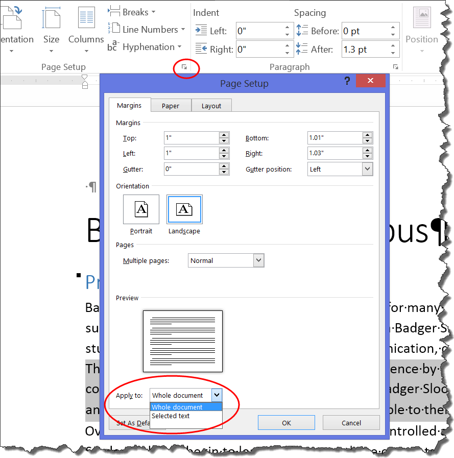If You Use The Page Setup Dialog, You Can Have An Orientation Change  Automatically Insert A New Page Section Break If You Have Selected Text,